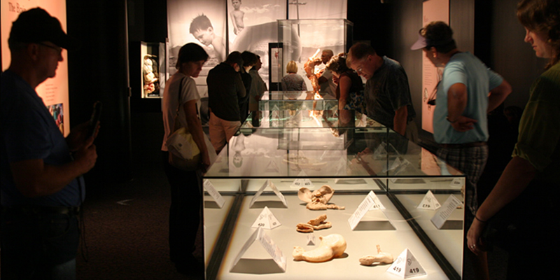 Class Highlight - Controversy and the World of the Museum
